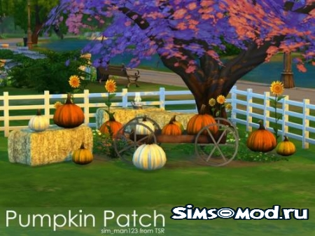 Набор Pumpkin Patch для симс 4